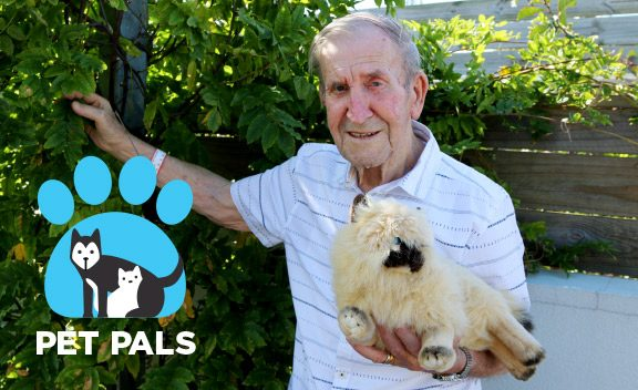 Pet Therapy Pals provide comfort and companionship