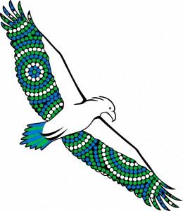 Sea_eagle_colour