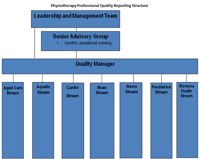 Physiotherapy Professional Quality Reporting Structure